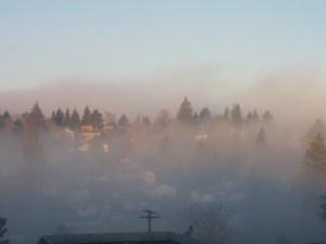 Fog01272014
