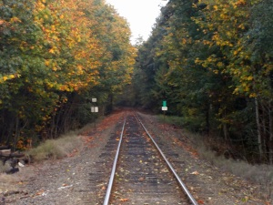 20141020RailroadTracks