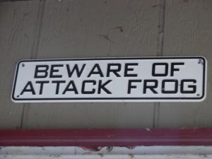 05182015AttackFrog
